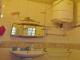 Pour vos vacances ou séjour à Tanà, un appartement confort  image 3